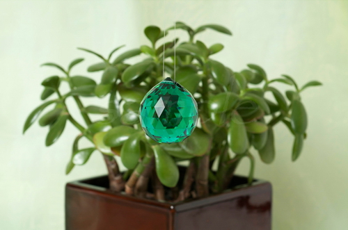 Green Crystal with Plant BTB Feng Shui Bagua Note Card